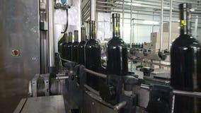 Il trasportatore imbottigliante e di sigillatura allinea alla fabbrica del vino stock footage