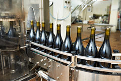 Il trasportatore imbottigliante e di sigillatura allinea alla fabbrica del vino Fotografia Stock