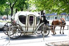 Il trasporto con un cavallo Fotografie Stock