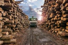 Il trasporto del pino collega una segheria fotografia stock libera da diritti