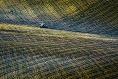 Il trattore agricolo tratta il campo Fotografie Stock Libere da Diritti
