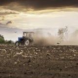 Il trattore ara un campo in primavera contro un bello cielo del tramonto Immagini Stock