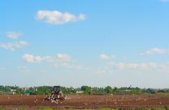 Il trattore ara un giacimento della sorgente Fotografia Stock Libera da Diritti