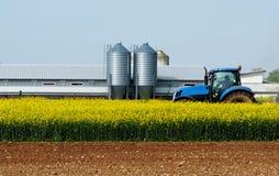 Il trattore blu in mezzo ad un giacimento giallo del canola, con un fabbricato rurale e due metal il silos sopra dietro Immagine Stock