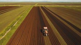 Il trattore coltiva la terra nel campo Fotografia Stock