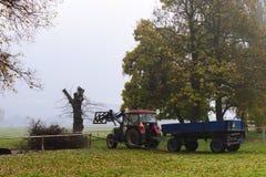 Il trattore con il rimorchio carica i rami in una ferita nebbiosa Fotografia Stock Libera da Diritti