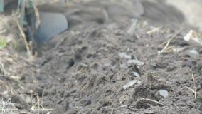 Il trattore d'acciaio solca la terra dell'aratro nella fine recente di autunno sulla vista stock footage