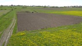 Il trattore d'avvicinamento che coltiva il terreno arabile per la semina dei raccolti, ingiallisce il seme di ravizzone Siluetta  archivi video