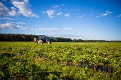Il trattore di Agrikultura coltiva il suolo sul campo Fotografia Stock