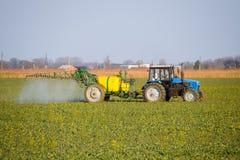 Il trattore fertilizza un giacimento del canola, spruzzante il fertilizzante con un trattore fotografie stock libere da diritti
