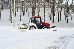 Il trattore rimuove la neve nel parco Immagine Stock Libera da Diritti