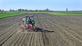 Il trattore semina il cereale Immagine Stock