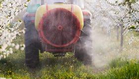 Il trattore spruzza l'insetticida nel campo del meleto Fotografia Stock Libera da Diritti