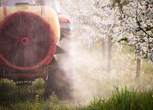 Il trattore spruzza l'insetticida nel campo del meleto Immagini Stock Libere da Diritti