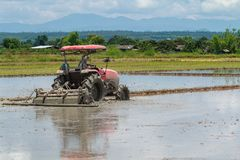 Il trattore sta arando nel giacimento del riso Fotografia Stock