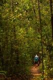 Il Trekker cammina in giungle nello Sri Lanka Immagini Stock Libere da Diritti