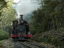 Il treno di soffio di Billy guida attraverso le gamme di Dandenong vicino a Melbourne, Australia fotografia stock libera da diritti