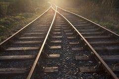 Il treno segue la conduzione al tramonto Fotografia Stock