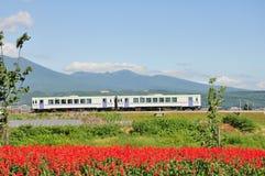 Il treno sulla ferrovia nella natura Fotografia Stock
