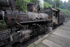 Il treno a vapore a scartamento ridotto Immagine Stock