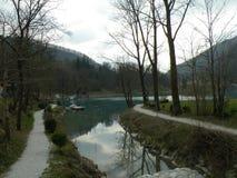 il tributario del ruscello nel lago, natura intatta immagini stock libere da diritti