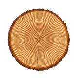 Il tronco di albero suona la struttura di vettore Fotografia Stock