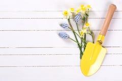 Il trovel dello strumento di giardino e dei fiori per i bambini su bianco ha dipinto il woode Fotografia Stock Libera da Diritti