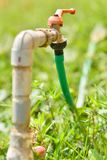 Il tubo flessibile si è collegato alla tubatura dell'acqua sull'erba verde fotografie stock libere da diritti