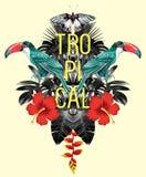 Il tucano, foglie della banana della palma, ibisco rispecchia l'effetto Fotografia Stock