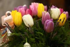 Il tulipano colorato bella porpora fiorisce il fondo Immagine Stock Libera da Diritti
