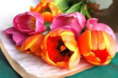 Il tulipano fiorisce il fondo del mazzo fotografia stock libera da diritti