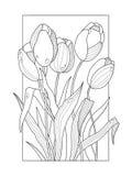 Il tulipano fiorisce l'illustrazione di vettore del libro da colorare Fotografia Stock