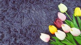 Il tulipano fiorisce il mazzo con la copia dello spazio su fondo porpora fotografia stock libera da diritti