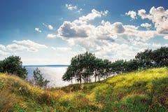 Il tumulto degli estate-alberi e del prato sopra il bordo del fiume Volga Russia in mezzogiorno di estate Fotografie Stock Libere da Diritti