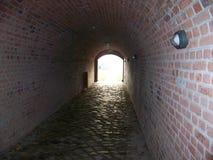 Il tunnel Fotografie Stock Libere da Diritti