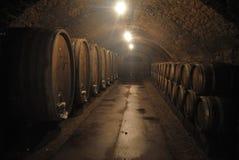 il tunnel Del tempo annerito del vino di St Martin frana Remich Fotografia Stock