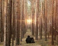 Il turista che riposa nell'uomo del viaggiatore della foresta abbraccia uno zaino e guarda al sole Scena di campeggio all'aperto  immagine stock libera da diritti