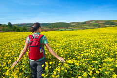Il turista della giovane donna cammina sui precedenti dei campi colorati Immagini Stock Libere da Diritti