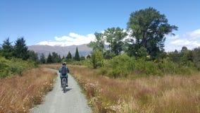 Il turista gode di bello paesaggio della campagna in Nuova Zelanda fotografia stock