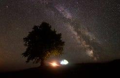 Il turista ha illuminato la tenda vicino al grande albero, accampantesi in montagne alla notte sotto il cielo stellato fotografia stock