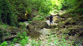 Il turista maschio va su un fiume della montagna dalla pietra alla pietra in foresta tropicale verde archivi video