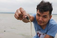 Il turista mostra le coperture della lingua Shell o di lampada (unguis di Lingula) a disposizione Fotografia Stock Libera da Diritti
