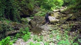 Il turista va su un fiume della montagna dalla pietra alla pietra in foresta tropicale verde archivi video