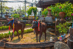 Il vagone con i tori scultura thailand Chiangmai fotografia stock libera da diritti