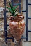 Il vaso è conico nella forma con aloe sta appendendo sulla parete in Cattaro Immagini Stock
