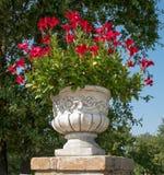 Il vaso di marmo Fotografia Stock