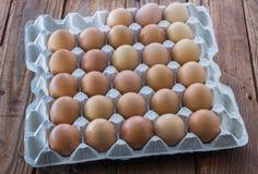 Il vassoio dell'uovo del cartone con il pollo marrone eggs Immagini Stock Libere da Diritti