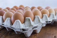 Il vassoio dell'uovo del cartone con il pollo marrone eggs Fotografia Stock