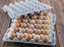 Il vassoio dell'uovo del cartone con il pollo marrone eggs Immagine Stock Libera da Diritti