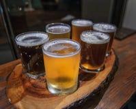 Il vassoio della birra Immagine Stock Libera da Diritti